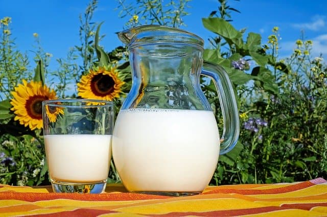 プロテインと牛乳