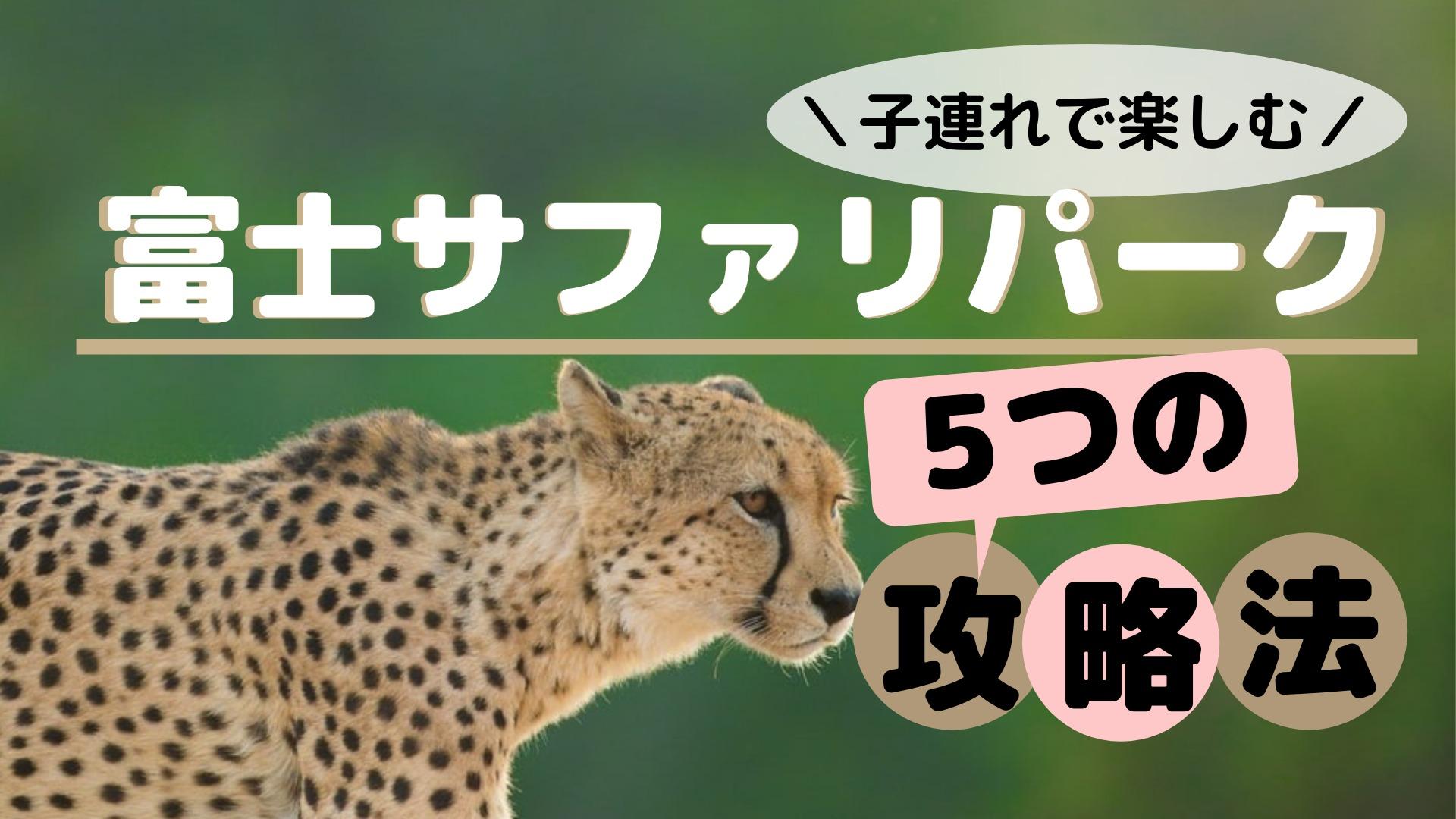 富士サファリパークを子連れで楽しむ5つの攻略法